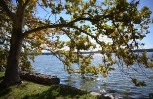 Staré jazero v Tate